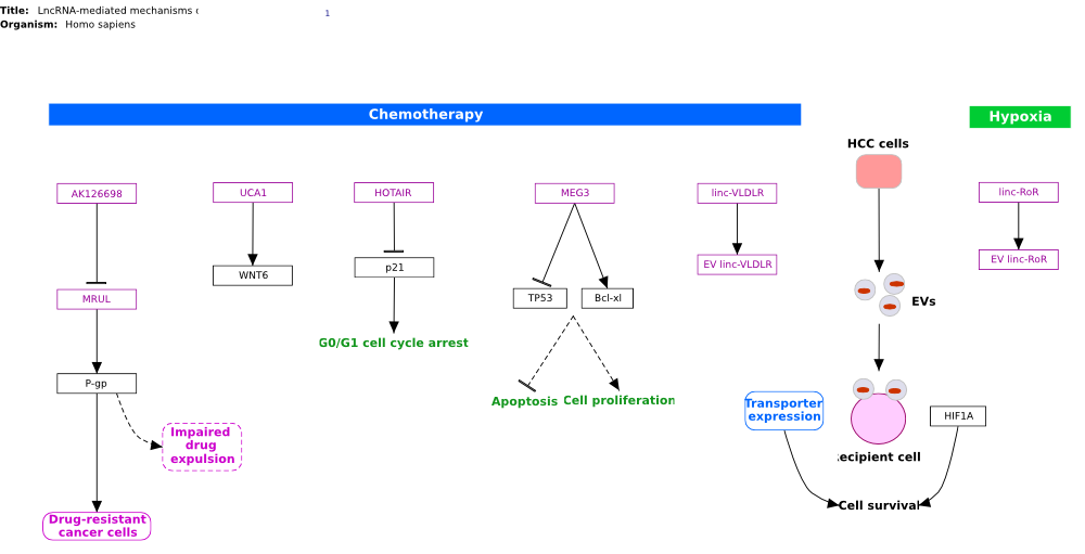 Diagram for pathway Pathway:WP3672