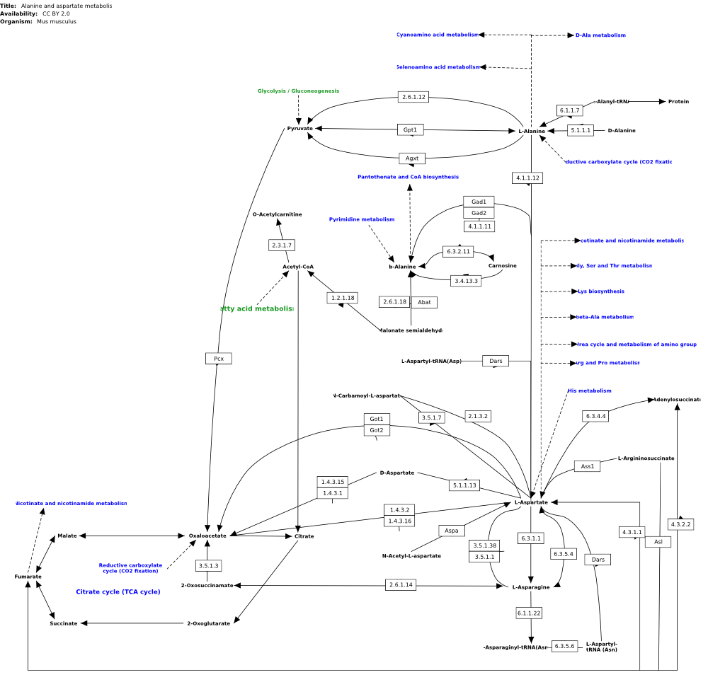 pathways: